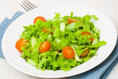 Fresh vegetable salad with lettuce, tomato and cucumber Royalty Free Stock Image