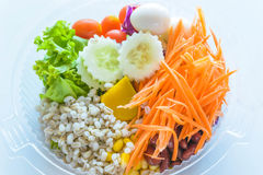 Fresh vegetable salad mix packed Royalty Free Stock Photo