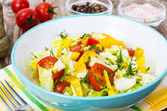 Fresh vegetable salad with olive oil Royalty Free Stock Image