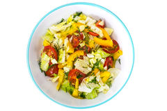 Fresh vegetable salad with olive oil Stock Photography