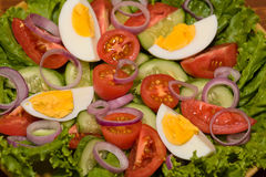 Fresh vegetable salad on plate Stock Photography