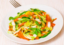 Fresh vegetable salad. On plate Royalty Free Stock Images