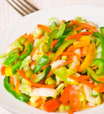 Fresh vegetable salad. On plate Stock Images