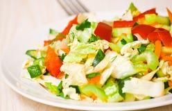 Fresh vegetable salad. On plate Stock Photo
