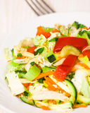Fresh vegetable salad. On plate Royalty Free Stock Photography