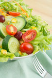 Fresh vegetable salad on plate Royalty Free Stock Photography