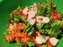 Fresh vegetable salad with radish, lettuce, carrot and sweet red pepper stock photos