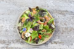 Fresh vegetable salad with smock salmon fish on white background Royalty Free Stock Images
