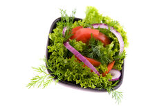 Fresh vegetable salad with tomato and cucumber Royalty Free Stock Images