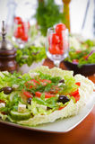 Fresh vegetable salad with tomato and cucumber Royalty Free Stock Photo