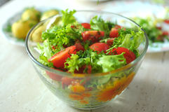 Fresh vegetable salad with tomato, cucumber and salad frisee Stock Images