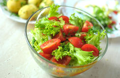 Fresh vegetable salad with tomato, cucumber and salad frisee Royalty Free Stock Photo