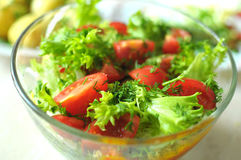 Fresh vegetable salad with tomato, cucumber and salad frisee Stock Image