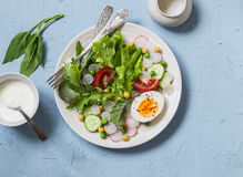 Fresh vegetable salad with tomatoes, radish, green herbs and boiled egg on a light blue stone background. Healthy Breakfast or snack Royalty Free Stock Photography