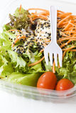 Fresh vegetable salad with topping Stock Images