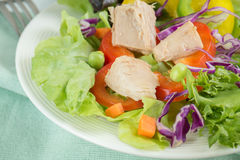 Fresh vegetable salad with tuna Stock Images