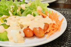 Fresh vegetable salad in white bowl topped with thousand island. Fresh vegetable salad in white plate topped with thousand island dressing Stock Images