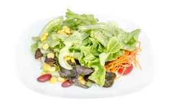 Fresh vegetable salad  in a white plate Royalty Free Stock Photography