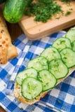 Fresh vegetable sandwich Royalty Free Stock Photo