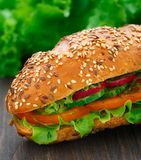 Fresh vegetable sandwich Royalty Free Stock Photo