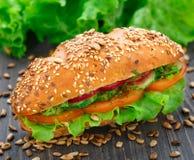 Fresh vegetable sandwich Stock Images