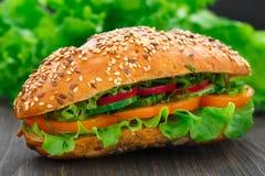 Fresh vegetable sandwich Stock Photos