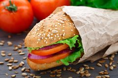 Fresh vegetable sandwich Royalty Free Stock Image
