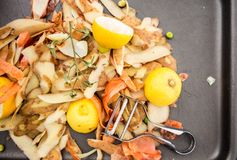 Fresh vegetable scraps and peeler. Fresh vegetable scraps with peeler, knife and towel, house waste/compost management concept Royalty Free Stock Images