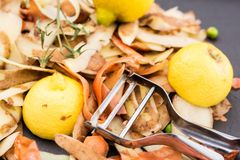 Fresh vegetable scraps and peeler. Fresh vegetable scraps with peeler, knife and towel, house waste/compost management concept Royalty Free Stock Photos