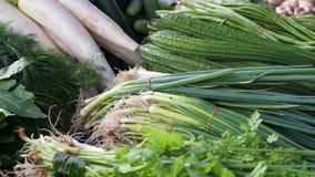 Fresh vegetable selling on Asia stall wet market. cilantro, daikon, ginger. stock video