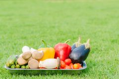 Fresh vegetable in silver plate Stock Photo