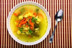 Fresh vegetable soup Royalty Free Stock Image