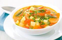 Fresh vegetable soup Royalty Free Stock Photo