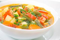 Fresh vegetable soup Royalty Free Stock Photo