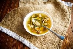 Fresh vegetable soup with forest mushrooms Royalty Free Stock Image