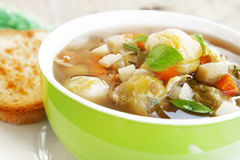 Fresh vegetable soup Stock Image