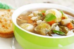 Fresh vegetable soup Stock Image