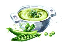 Fresh vegetable soup with green peas, Watercolor hand drawn illustration, isolated on white background.  vector illustration