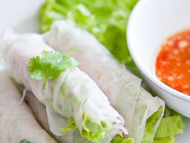 Fresh vegetable spring rolls on white surface Royalty Free Stock Image