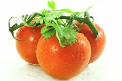 Fresh Vegetable tomato Royalty Free Stock Photos