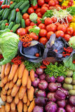 Fresh vegetable variety, vertical photo Royalty Free Stock Images