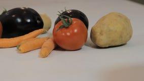 Fresh vegetable on white background Stock Photos
