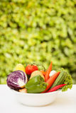 Vegetable in a White Plate. Over Nature Background Royalty Free Stock Photos