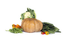 Fresh vegetable on white Royalty Free Stock Photography