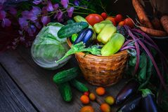 Vegetable Harvest Still Life Royalty Free Stock Images