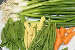 Fresh vegetables. Set of vegetables good for any kind of vegetarian soup or salad Royalty Free Stock Photos