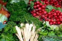 Fresh vegetables. Lettuce & radish, showcase Stock Photo