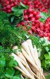Fresh vegetables. Lettuce & radish, showcase stock photos
