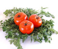 Fresh vegetables. Tomatoes, cucumbers, garlic and others on a white background Royalty Free Stock Photo