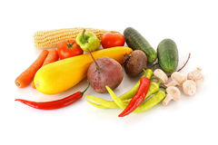 Fresh vegetables. On the white background stock photography